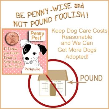 pound foolish