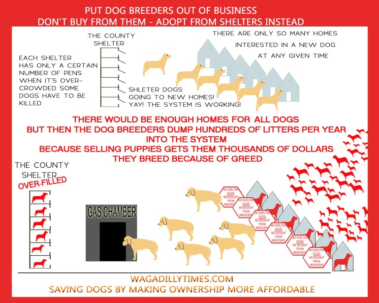 Put Breeders Out of Business - by Me